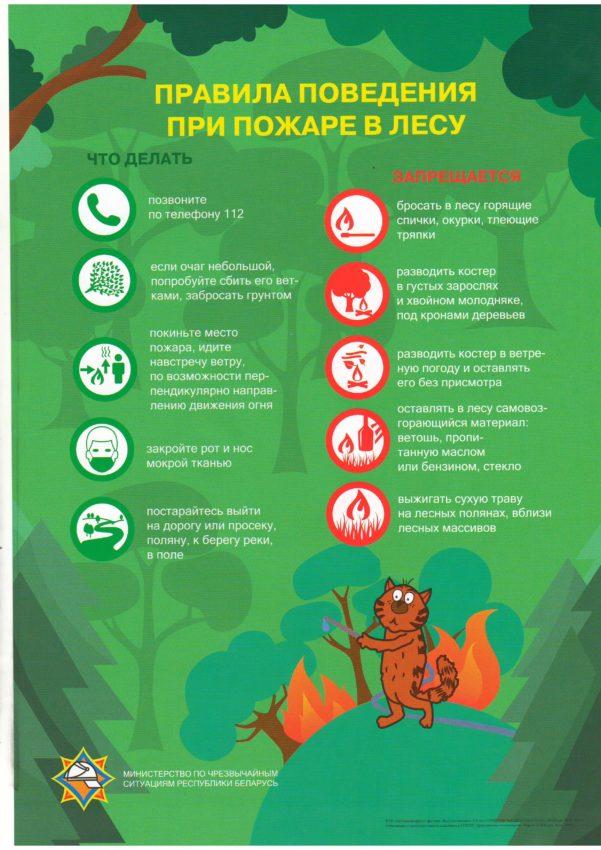Информация о недопущении сжигания сухой растительности и ...